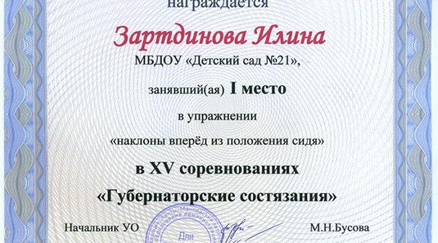 Зартдинова Илина 2017
