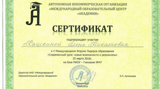 Сертификат участника каш 2016