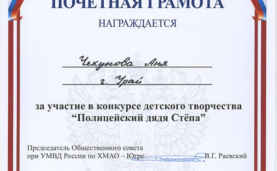 Чекунова аня 2016