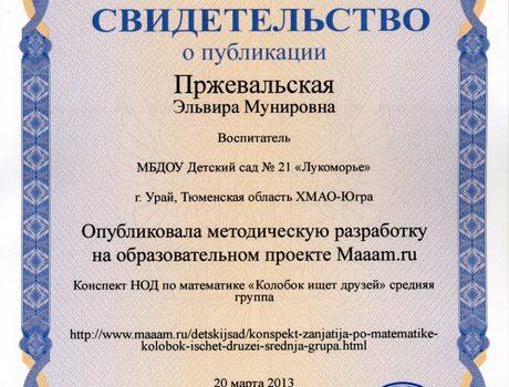 Пржевальская Эльвира Мунировна058