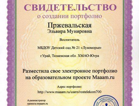 Пржевальская Эльвира Мунировна059