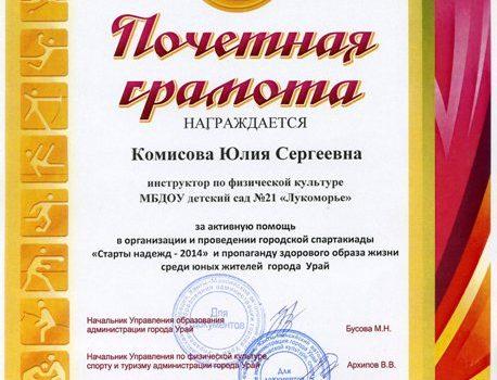 Комисова ЮС501