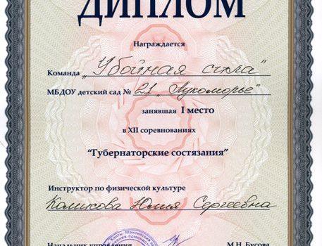 Диплом Губернаторские