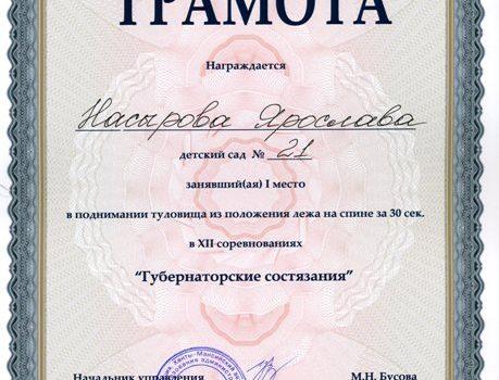 Насырова Ярослава520