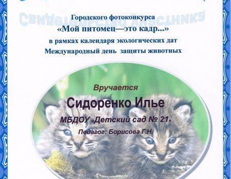 Сидоренко Илья588