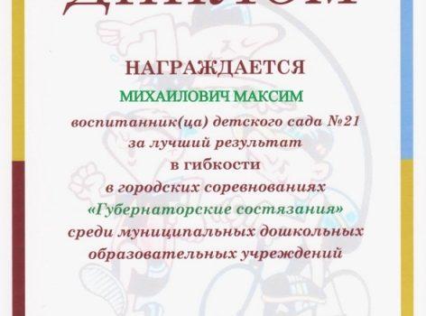 Копия губер диплом 013-002