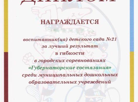Копия губер диплом 013