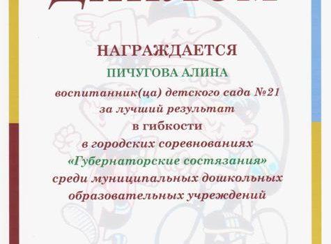 губер диплом 013