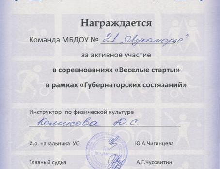 Комисова Ю.С.