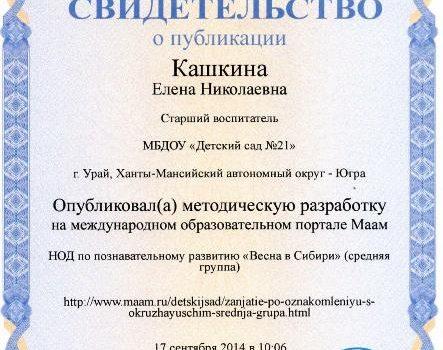 Кашкина 15