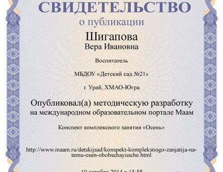 Шигапова 6