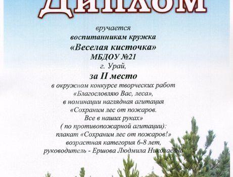 Весёлая кисточка572