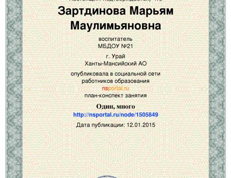 Зартдинова М.М.29