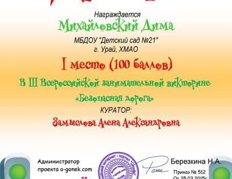 Михайловский Дима 3