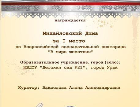 Михайловский Дима 4