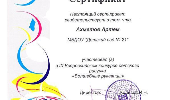 Ахметов Артем2016