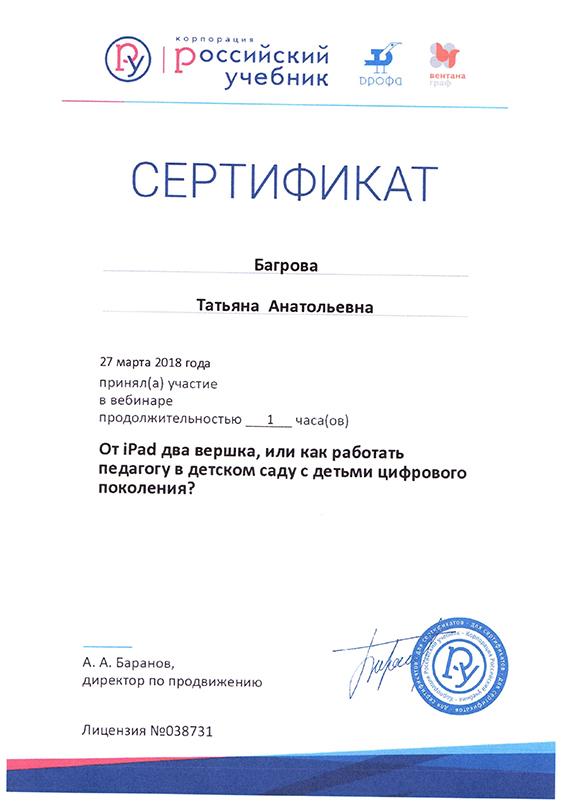 Багрова Твебинар 2018