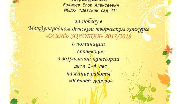 Бакшеев Егор 2017