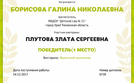 Борисова Г плутова 2017