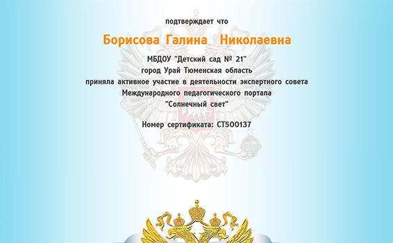 Борисова Солнечный свет 2017г