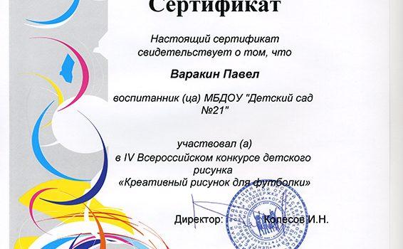 Варакин П 2014