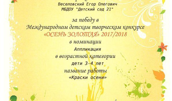 Веселовский Егор 2017