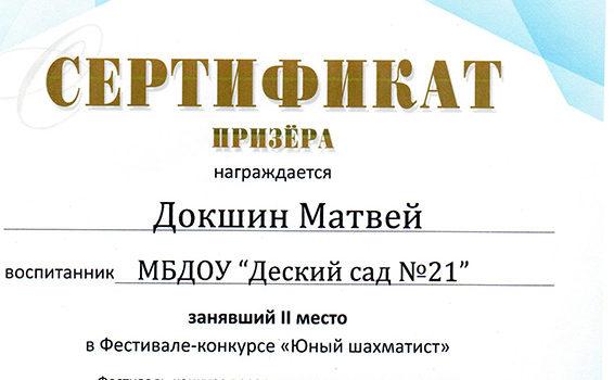 Докшин М 2 место2018
