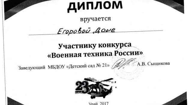 Егорова Даша2017