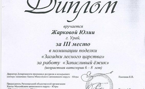 Жаркова Юля2016