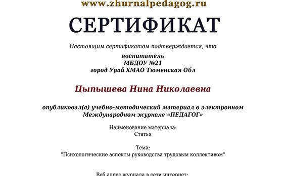 Журнал педагог2019