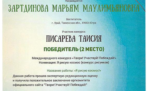 Зартдинова писарева 2019