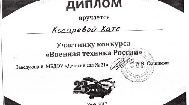 Косарева Катя диплом2017