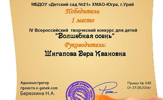 Костенко Матвей 2016, шига