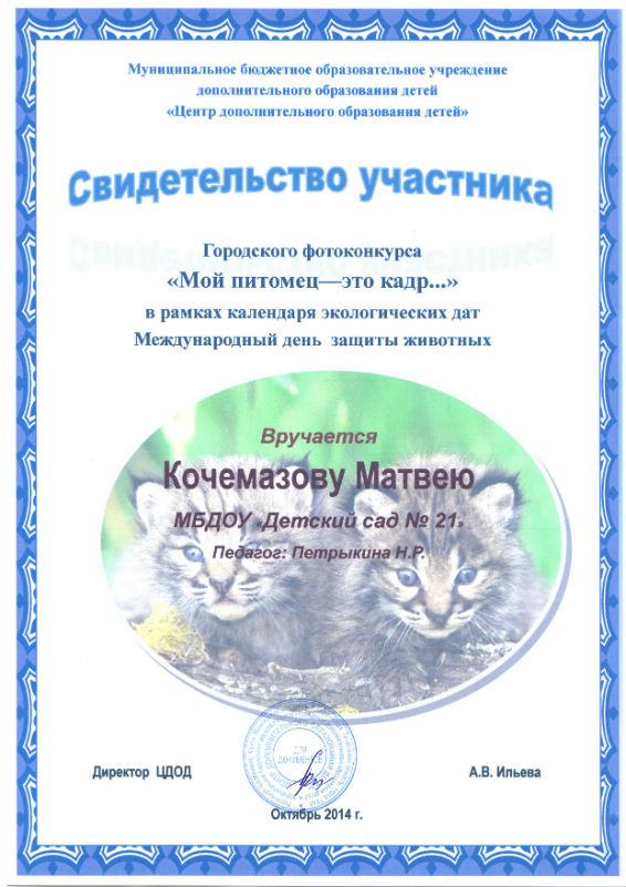 Кочемазов 2014