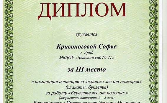 Кривоногова Софья 2015
