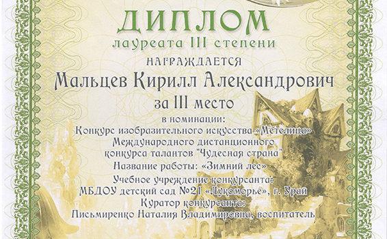 Мальцев Кирилл2015