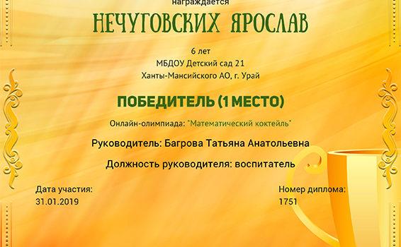 Нечуговских 2019