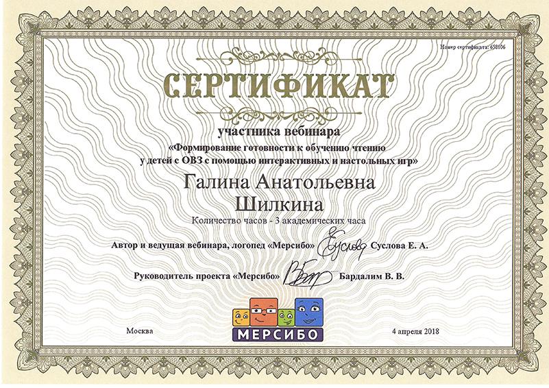 Овз Шилкина