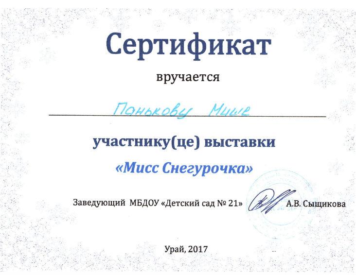 Паньков М.2017