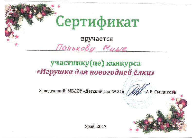 Паньков 2017