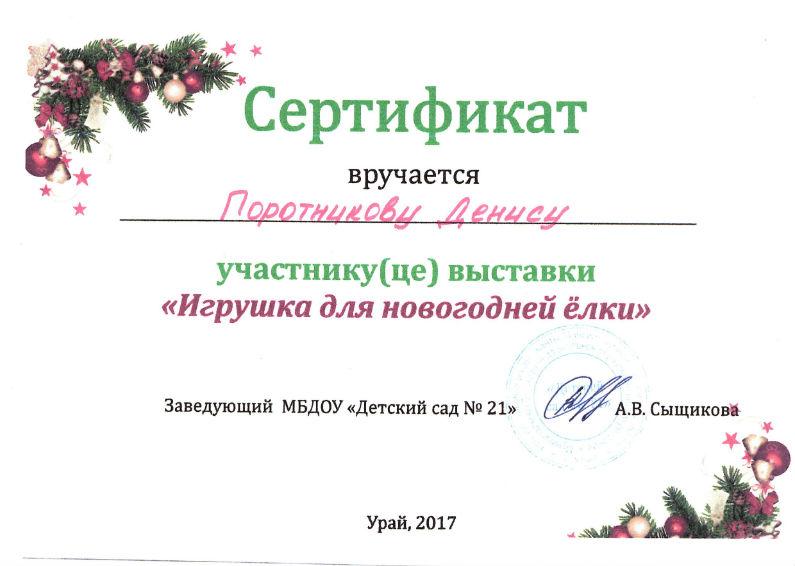 Поротников 2017