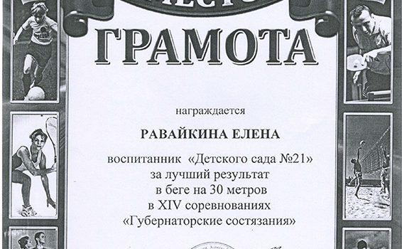 Равайкина Елена2016