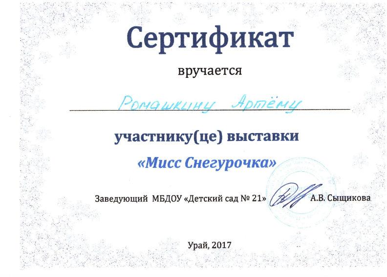 Ромашкин 2017