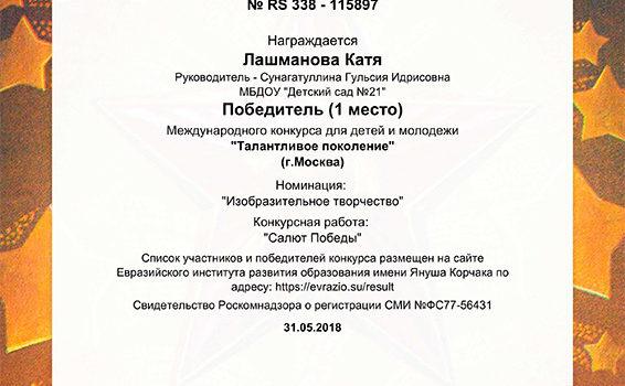 Диплом - Лашманова Катя