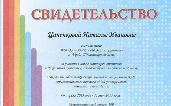 Семинары-тренинги Цапенкова Н