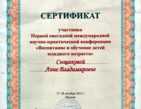 Сертификат Анна Влад.