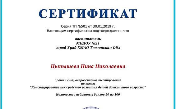 Сертификат Цыпышева 2019