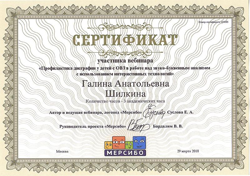 Сертификат Шилкина 2018