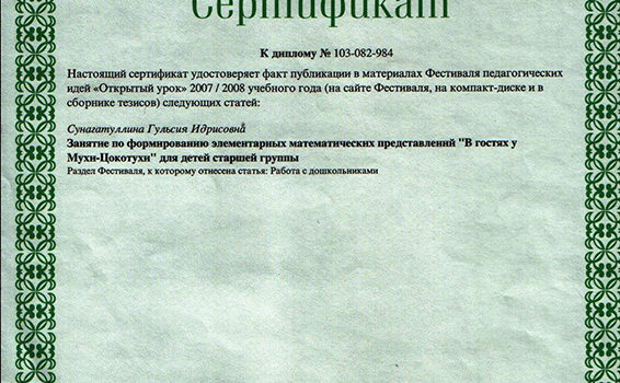 Сертификат 2008