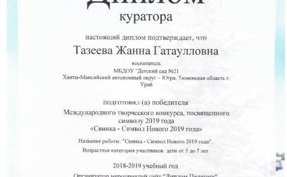 Символ года 2019Тазеева